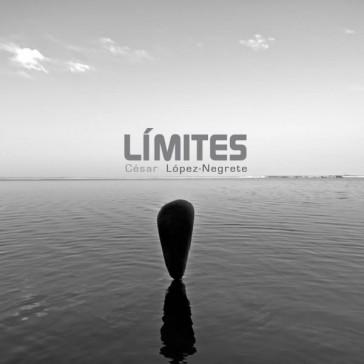 Límites. 2013