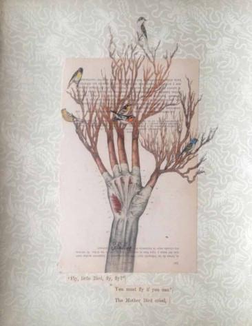 FLY LITTLE BIRD. Lápiz, lápices de color, collage sobre seda china 37 x 30.5 cm. 2016
