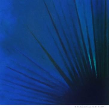 Conversatorio: Espacios del color