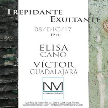 Trepidante/Exultante of Elisa Cano and Victor Guadalajara