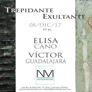 Trepidante/Exultante de Elisa Cano y Victor Guadalajara